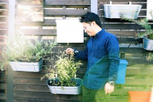 Plants and Japanese man